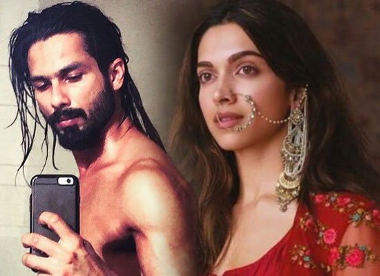 Shahid to play Deepika's husband in Sanjay Leela Bhansali's Padmavati?