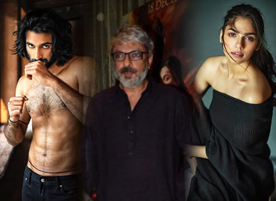 Bhansali to launch niece Sharmin with Jaaved Jaaferi's son Meezan in Malaal!