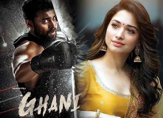 Tamannaah Bhatia to unite with Varun Tej for 'Ghani'!