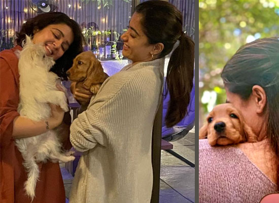 Rashmika Mandanna's loveable pic with her pet Aura from the sets of Goodbye!